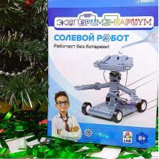 Робототехника 1Toy Солевой робот