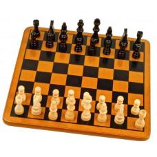 Шахматы в пакете